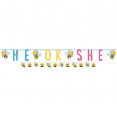 What Will It Bee? Jumbo Letter He or She Banners Pack of 2