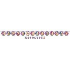 Shimmer & Shine Letter Ribbon Pennant Banner 3.2m x 25cm