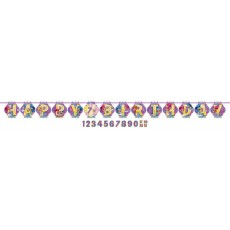 Shimmer & Shine Letter Ribbon Pennant Banner