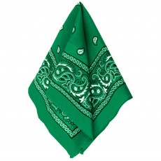 Cowboy & Western Green Bandana Head Accessorie