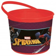 Spider-Man Webbed Wonder Container Favour Boxe