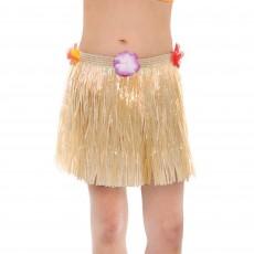Hawaiian Party Decorations Skirt Child Costumes