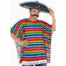 Mexican Fiesta Multi Coloured Serape Adult Costume