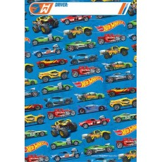 Hot Wheels Wild Racer Folded Loot Favour Bags