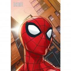 Spider-Man Webbed Wonder Folded Loot Favour Bags 23cm Pack of 8