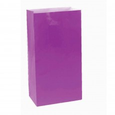 Purple New Large Paper Favour Bags