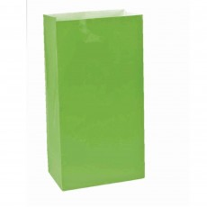 Kiwi Green Large Paper Favour Bags 25cm x 13cm Pack of 12
