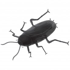 State of Origin Giant Cockroach Prop Photo Prop