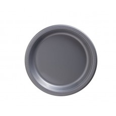 Silver Plastic Lunch Plates