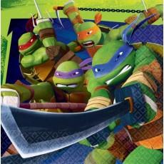 Teenage Mutant Ninja Turtles Lunch Napkins 33cm x 33cm Pack of 16