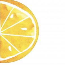 Hawaiian Hello Summer Lemon Slice Shaped Lunch Napkins