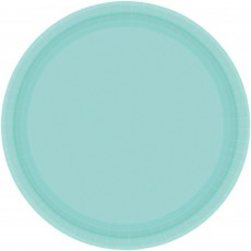 Round Robin's Egg Blue Paper Banquet Plates 26cm Pack of 20