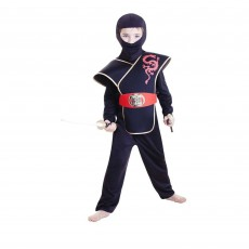 Teenage Mutant Ninja Turtles Deluxe Ninja Boy Child Costume