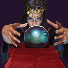 Halloween Fortune Teller Crystal Ball Light-Up Misc Decoration