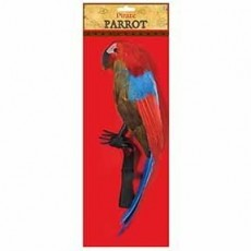 Pirate Party Supplies - Feather Parrot
