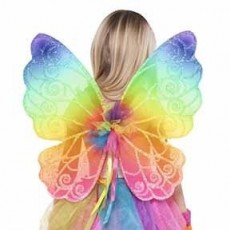 Fairies Rainbow Fairy Wings Costume Accessorie