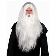 Fairytale Sorcerer Wig and Beard Head Accessorie