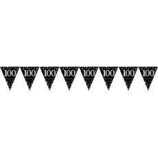100th Birthday Sparkling Celebration Prismatic Pennant Banner 4m x 20cm