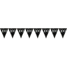 100th Birthday Sparkling Celebration Prismatic Pennant Banner