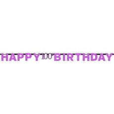 100th Birthday Pink Celebration Prismatic Letter Banner