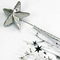 Silver Star Foam Spray Spangle