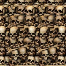 Halloween Catacombs Skulls Backdrop Scene Setter