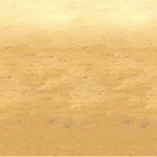 Hawaiian Desert Sand Backdrop Insta-Theme Scene Setter