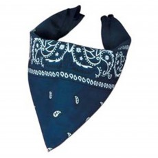Cowboy & Western Blue Cowboy Bandana Costume Accessorie