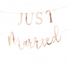 Rose Gold Botanical Wedding Just Married Banner 1.5m