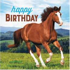 Horse and Pony Happy Birthday Lunch Napkins Pack of 16