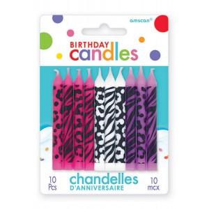 Birthday-licious Assorted Colours Animal Print Bargain Corner