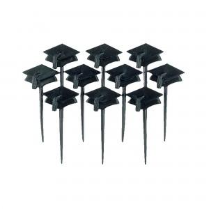Graduation Black  Cap Party Picks