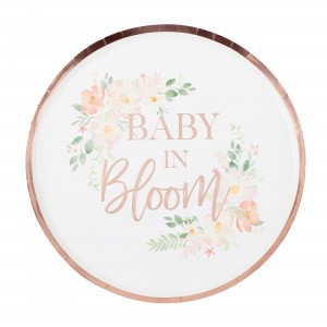 Baby in Bloom Dinner Plates