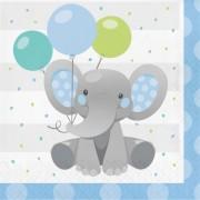 Boy Enchanting Elephant