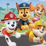 Paw Patrol Adv Lunch Napkins Pack of 16