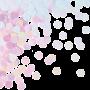 Iridescent Foil Circles Confetti 14g