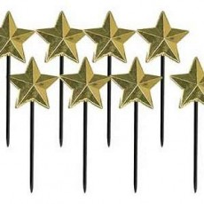 Gold Star Party Picks Pack of 8