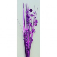 Purple Spangles 56cm Onion Grass Stars