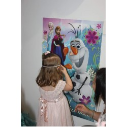 Disney Frozen Wall Decorations