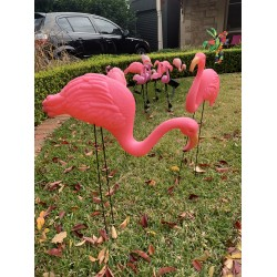 Flamingo Stakes Yard Signs